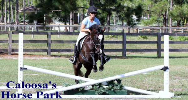 Equestrians Always Welcome!